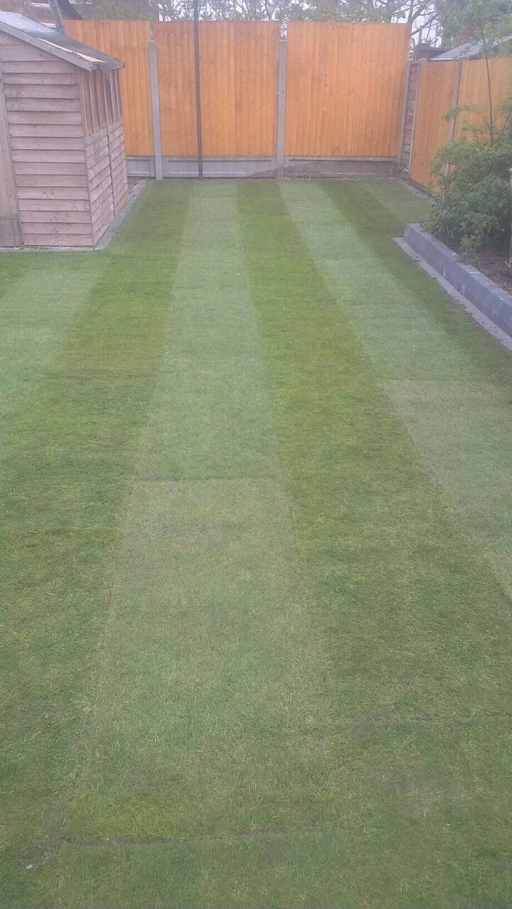 Flawless Landscaping Lawns