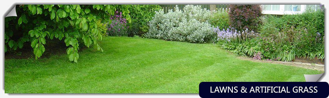 grass1024-285-4title